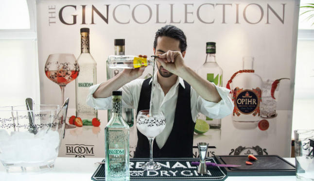 the_gin_collection